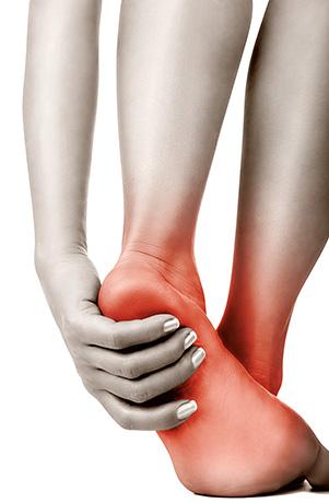 foot pain – plantar fasciitis – hemmett health & chiropractic, Skeleton